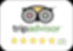 TripAdvisor%20button_edited.png