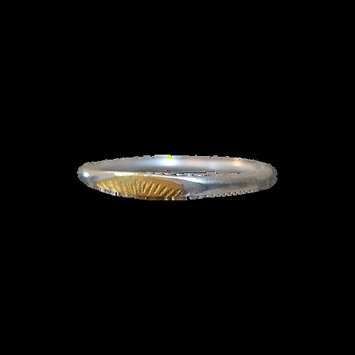 Ray Ring