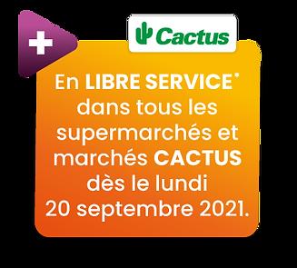 LibreServiceCactus.png