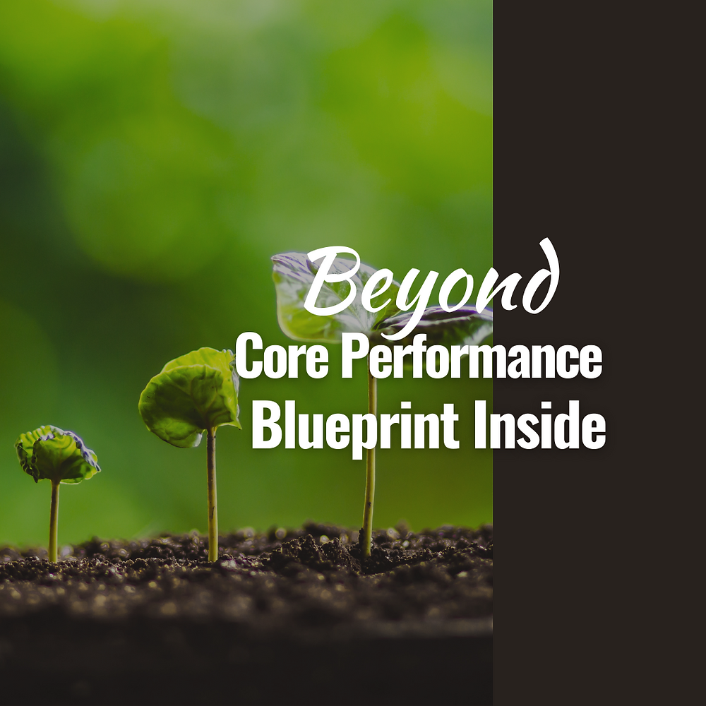The transformative CORE PERFORMANCE coaching is an inner work that integrates the head, heart, and soul and enables extraordinary performance at both personal and professional levels.