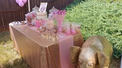 Jungle Safari Sweets Table