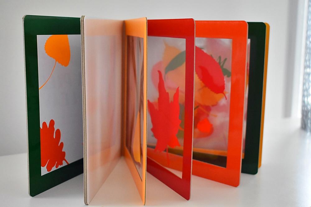 A Pile of Leaves by Jason Fulford & Tamara Shopsin