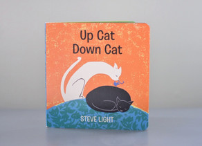 New Publication: Up Cat Down Cat by Steve Light