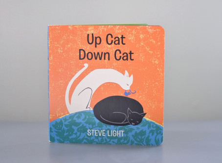 New Publication: Up Cat Down Cat by Steve Light