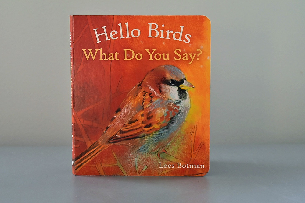 Hello Birds What Do You Say? by Lois Botman