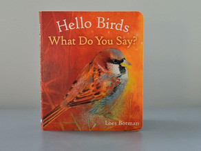 Hello Birds What Do You Say? by Loes Botman