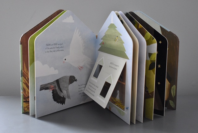 Birdhouse: A lift-the-flap book of discovery