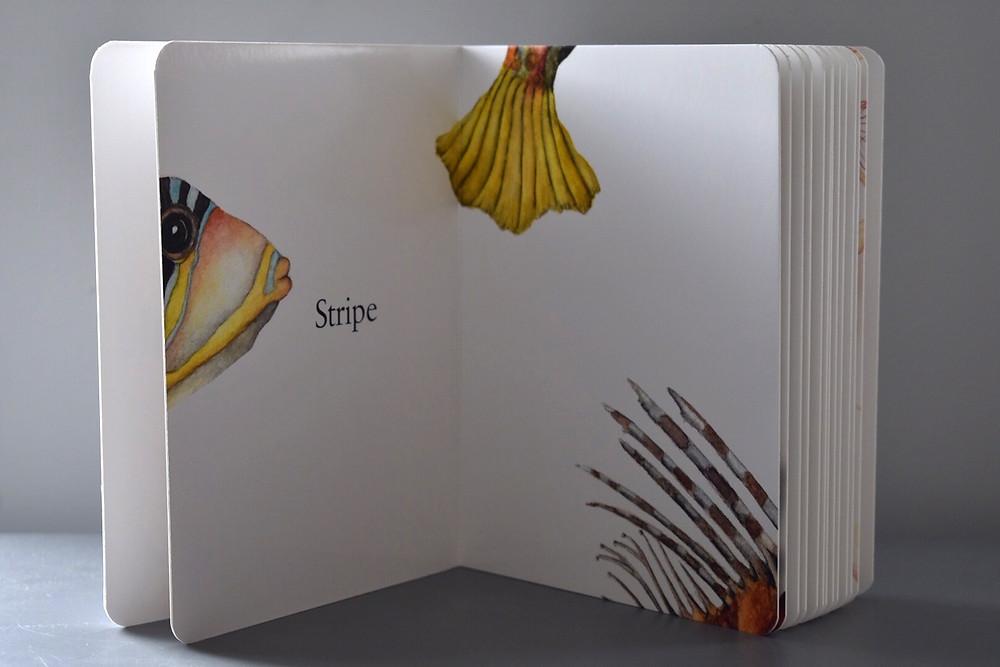 Dot, Stripe, Squiggle by Sarah Tuttle & Miriam Nerlove