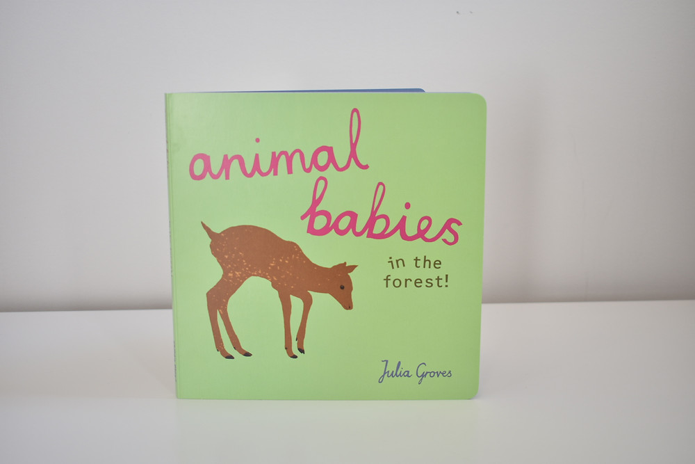Animal Babies by Julia Groves