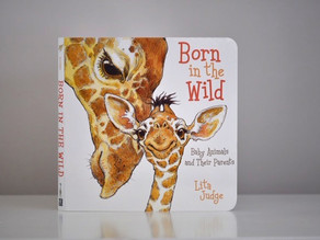 New to Board Book Format: Born in the Wild Baby Animals and Their Parents by Lita Judge