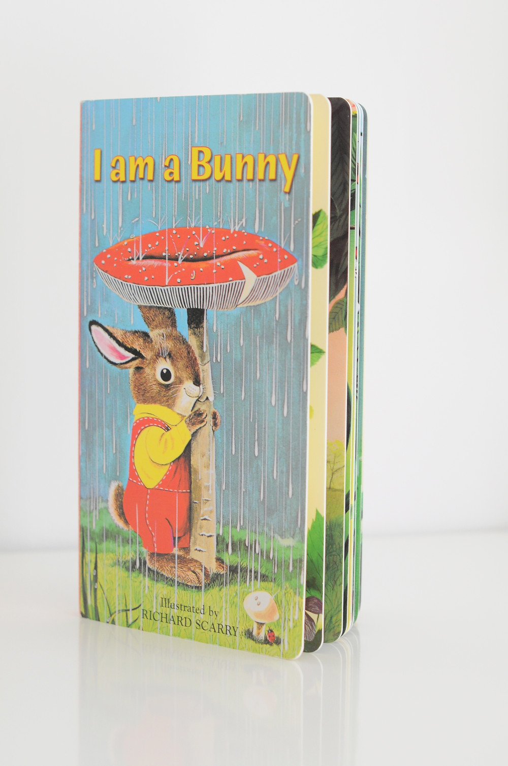 I am a Bunny illustrated by Richard Scarry