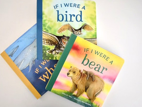 If I Were A Bear Series by Shelley Gill with Illustrations by Erik Brooks