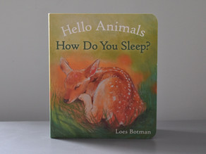 New Publication: Hello Animals How Do You Sleep? By Loes Botman