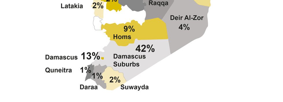 Survey Participators in Syria