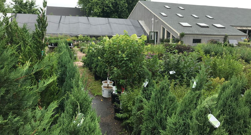 Broadview Landscape & Garden Center