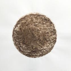 Compost Heap #2 MD