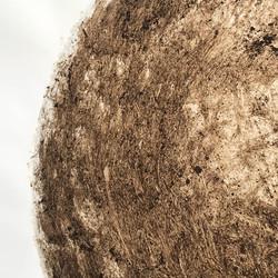 Compost Heap #3 closup MD