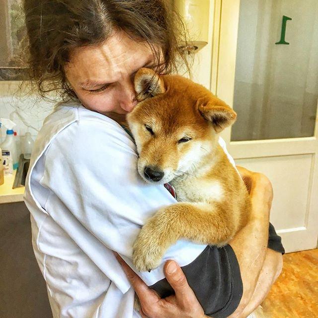 Lovely Pablo visiting veterinarian Floor