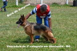 Bora do Assyrius_edited.jpg