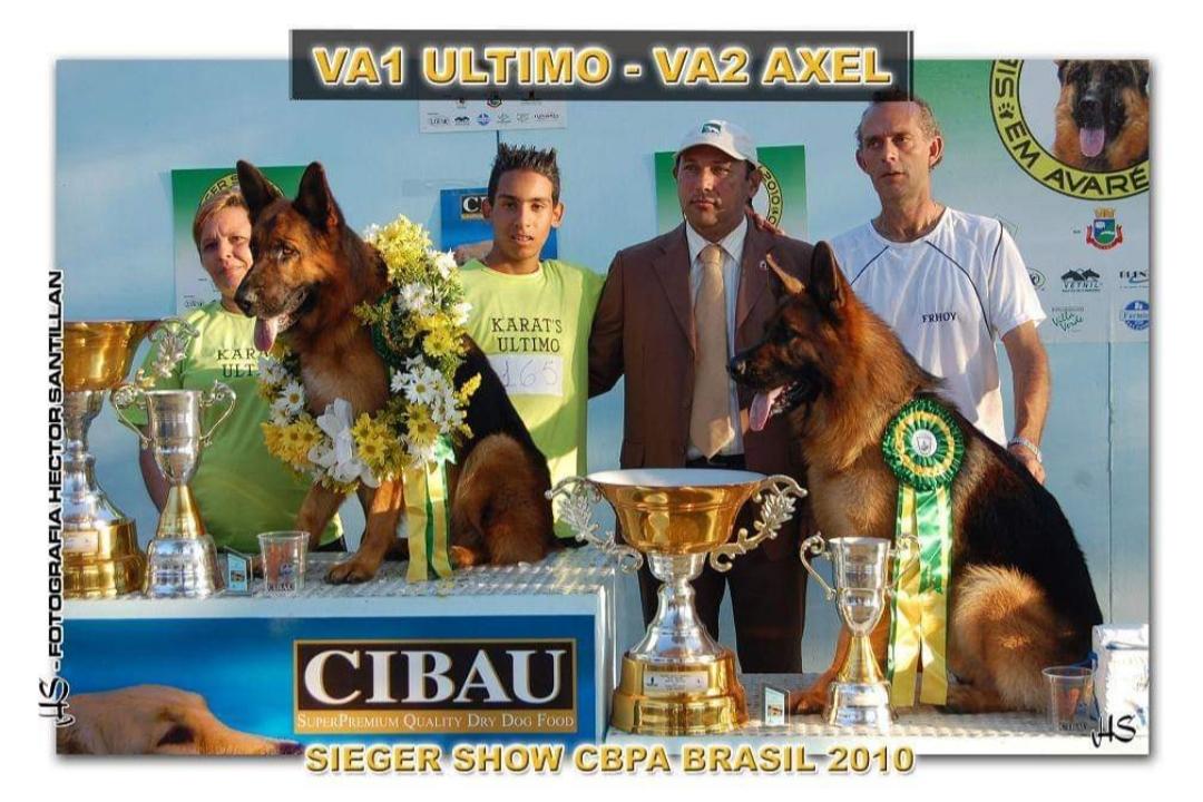 Sieger 2010