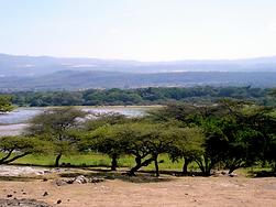 P1040160_Ethiopia.png