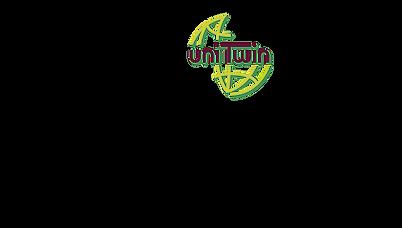 unitwin_pol_university_lodz_en_pol.png