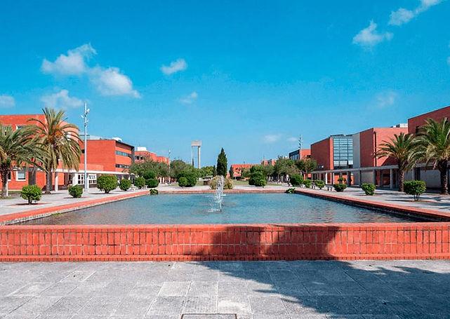 hmb-aveiro-universidade.jpg