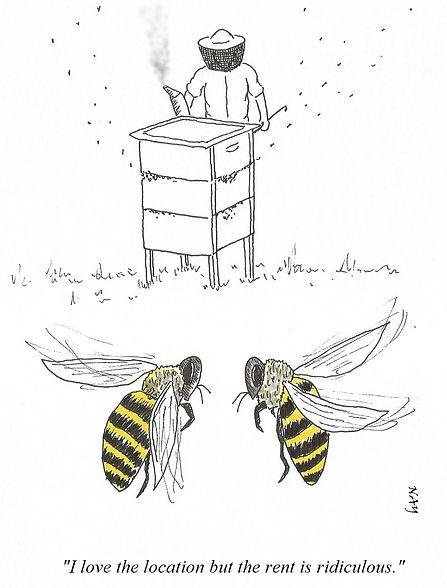 New Hive v3.jpg