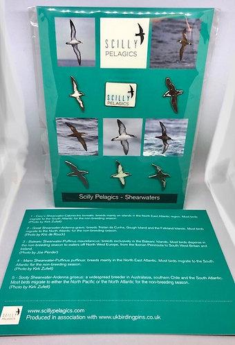 Shearwater pin badges - full set of six