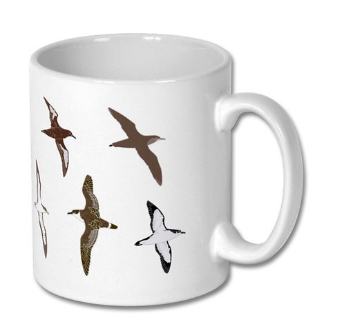 Mixed shearwaters mug