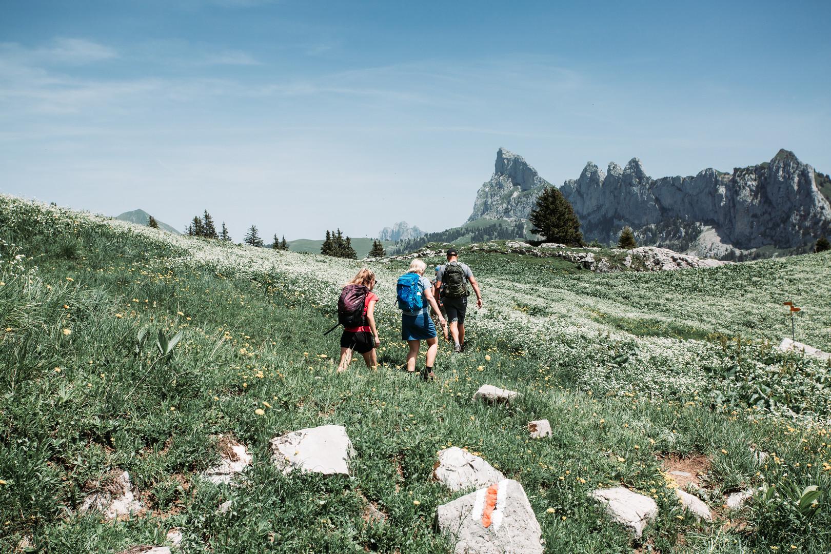 14 Hike to Cabane des Marindes.jpg