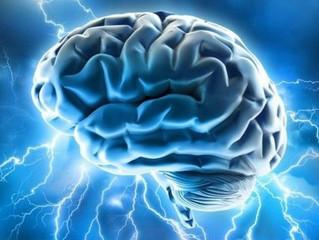 Kognitivní funkce - pracovní paměť