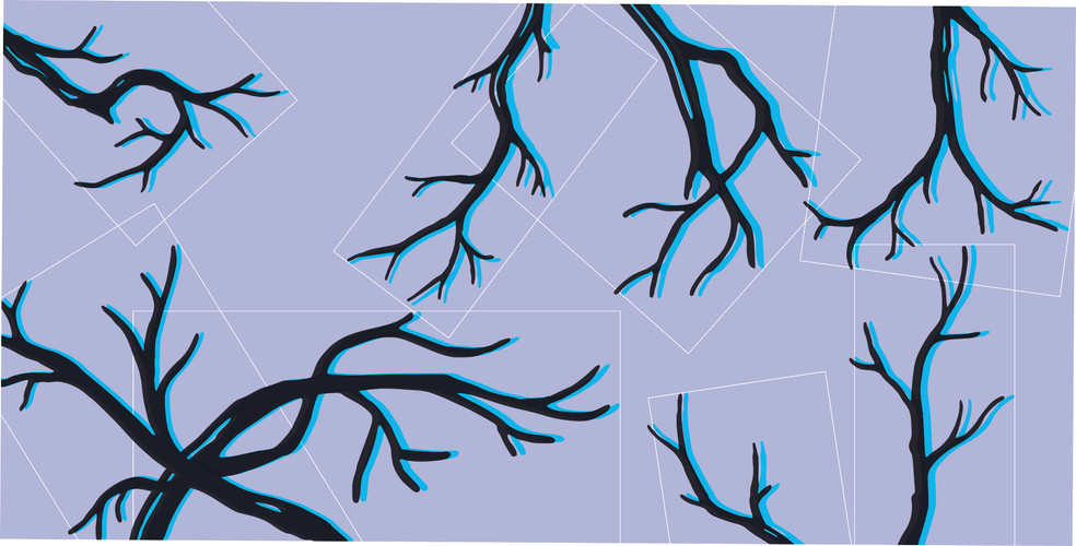 twigs back3.jpg