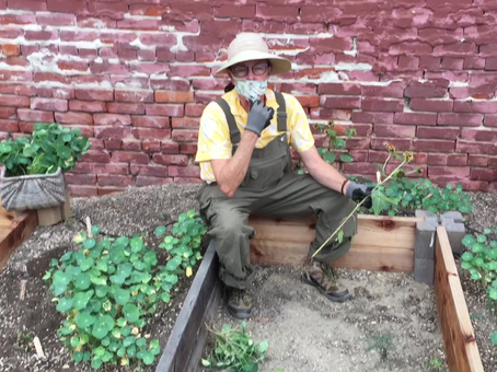 Little Sprouts Garden Gets a Makeover