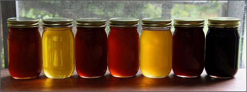 Honey Variety