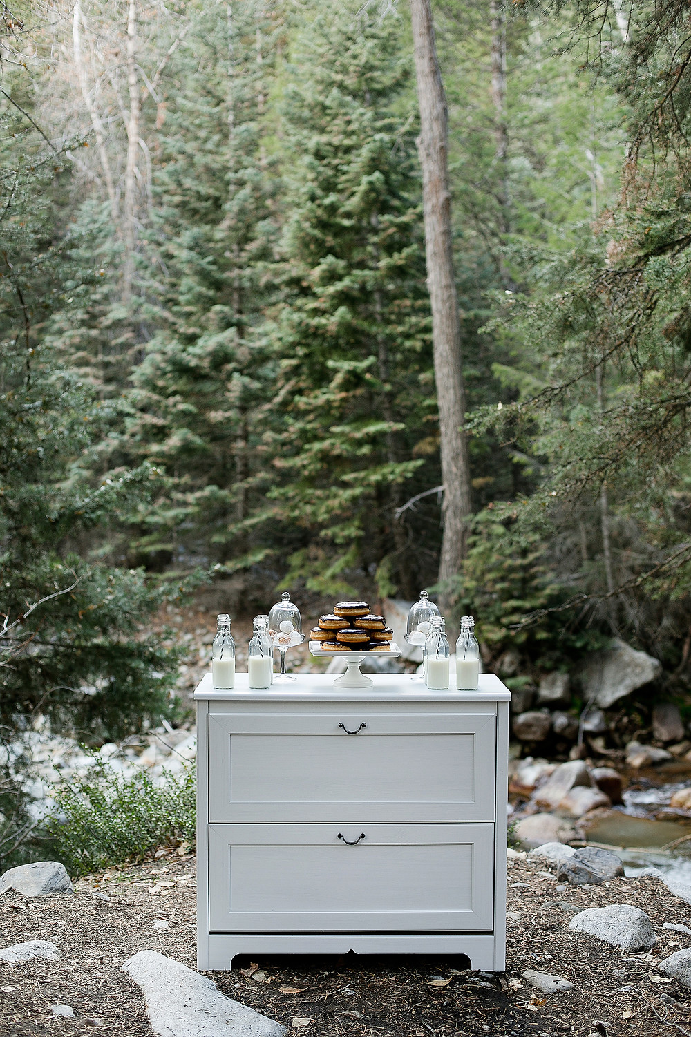 dresser with milk and donuts in the middle of the forest