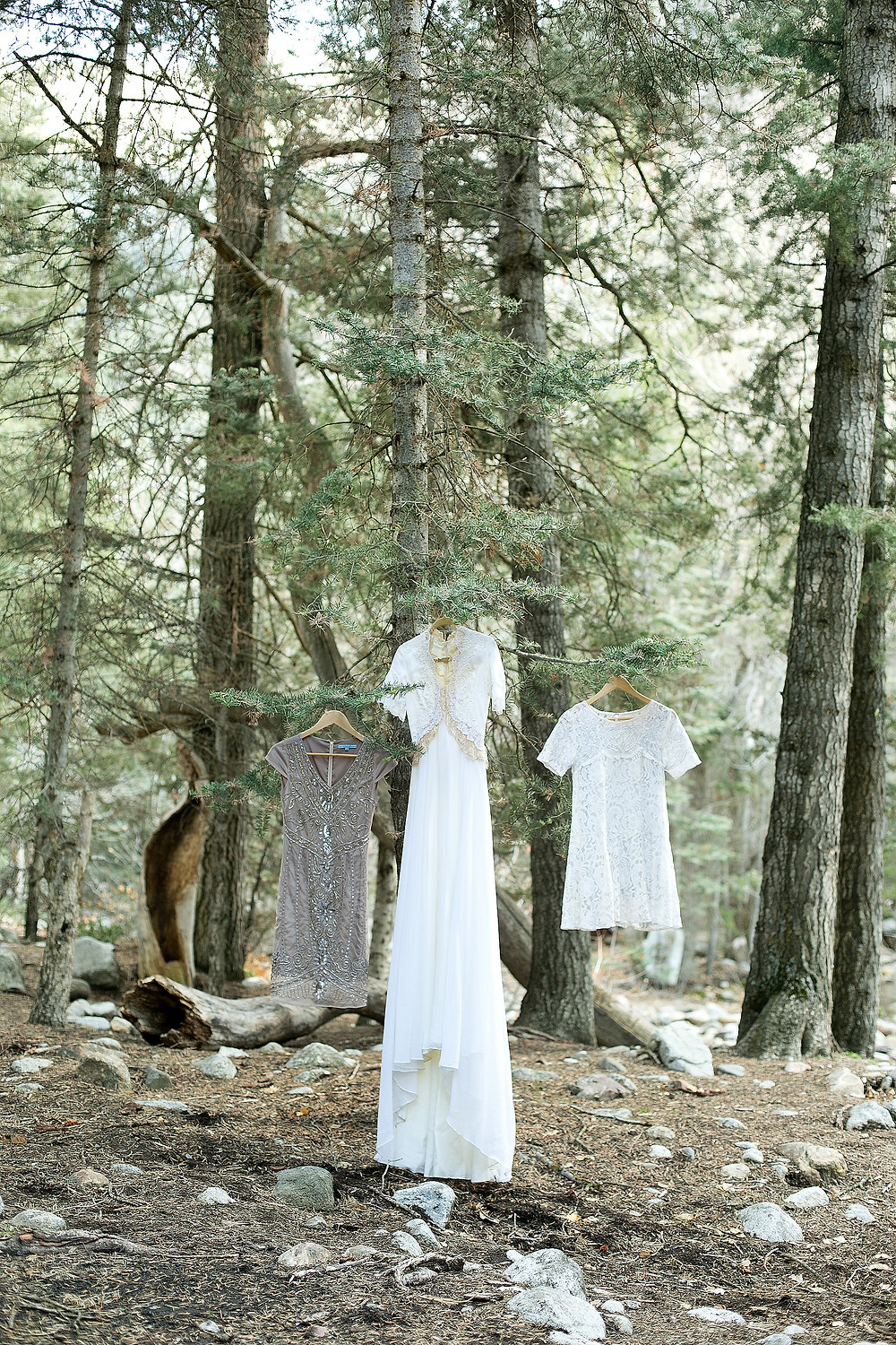 three dresses hanging from trees