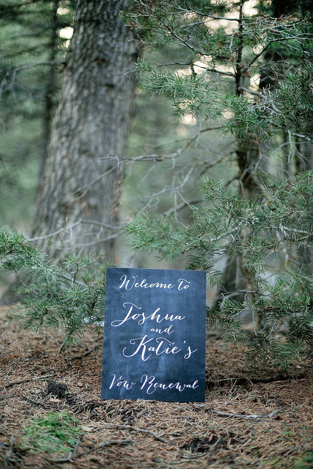 sign welcoming guest to wedding in the forest