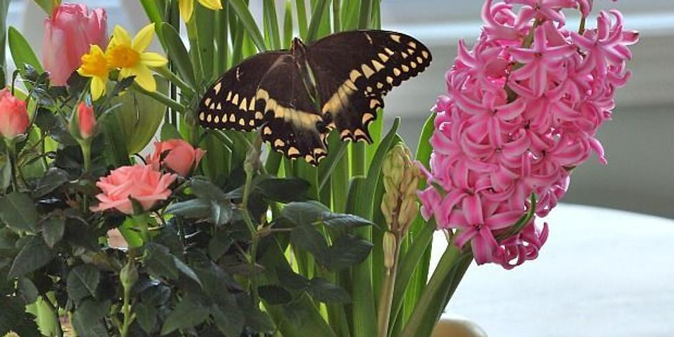 Wine & Floral Design: Spring Bulb Garden!