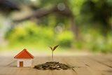 לא רק ליקויים, יזם שלא רשם בית משותף ישלם פיצויים לרוכשי הדירות