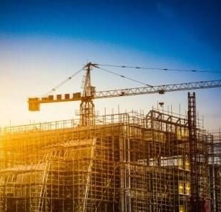 תפקידי הנציגות: כיצד השפיע התנהלות הנציגות על הליכים בפני המפקחת