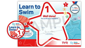 Learn-to-Swim-Stage-1-WS_0.jpg