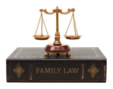 Public weighs in on paralegals in Family Court