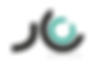 lmi logo.png