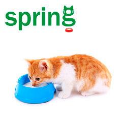 Миски для кошек и собак  купить недорого оптом у производителя в Украине Весна ООО