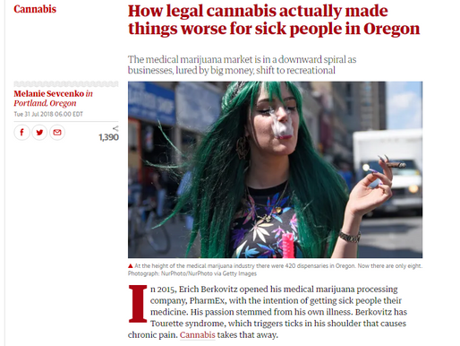 The Guardian interviewed us for an article!