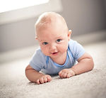 Fenton mi carpet cleaning,  Carpet Cleaners Fenton, MI