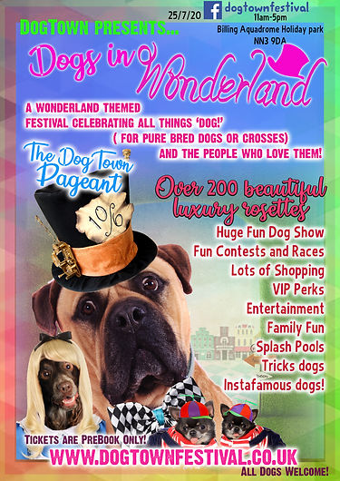 dogtown wonderland flyer .jpg