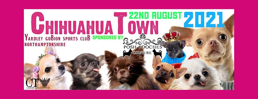 chihuahuatown banner chis plus spon.jpg