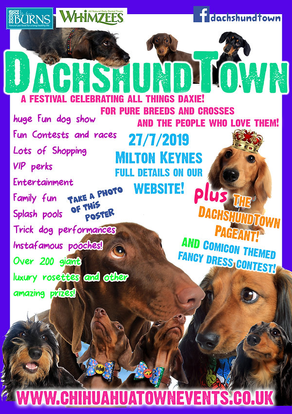 dachshundtown list flyer.jpg